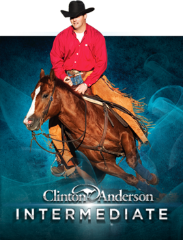 Clinton Anderson TRICK HORSE TRAINING 4 DVDS