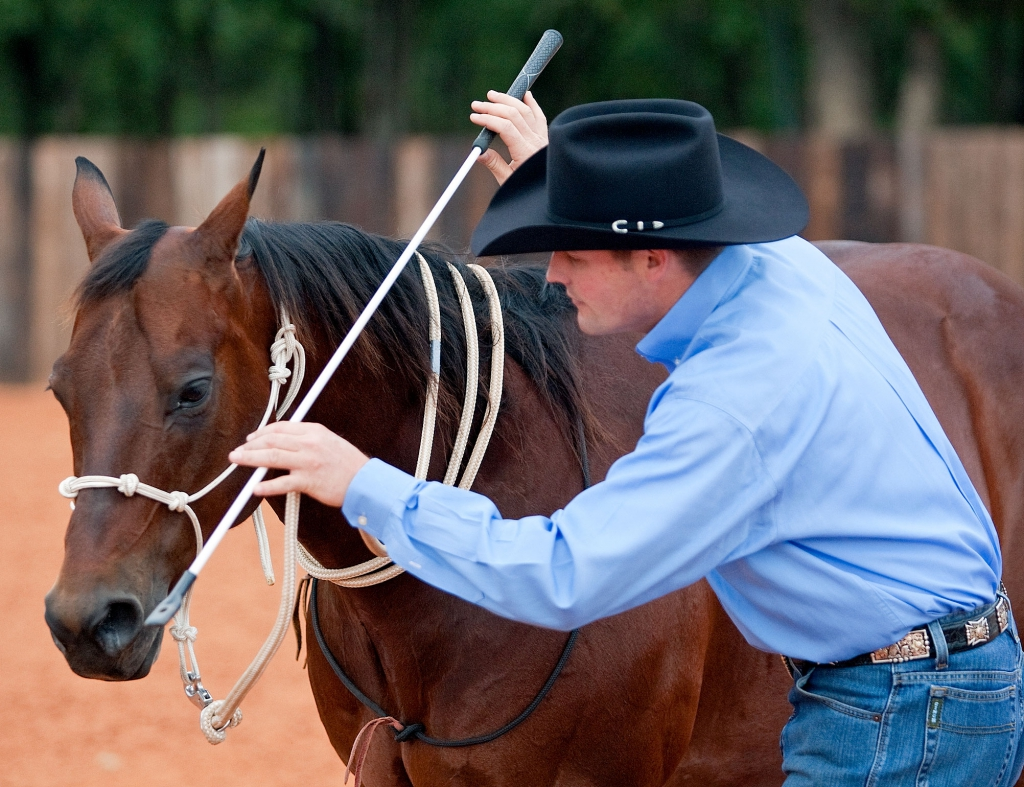 Stop horse from backing up by tapping air for rythem.