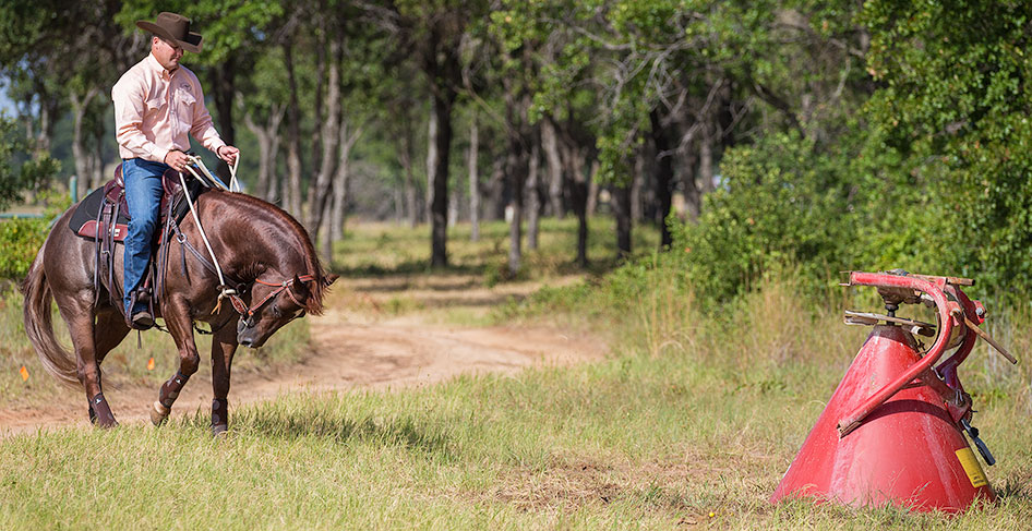 Retreat from object that spooked horse.