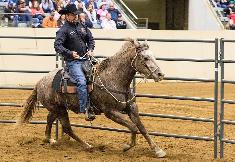 Get horse's feet moving at all 3 gaits.