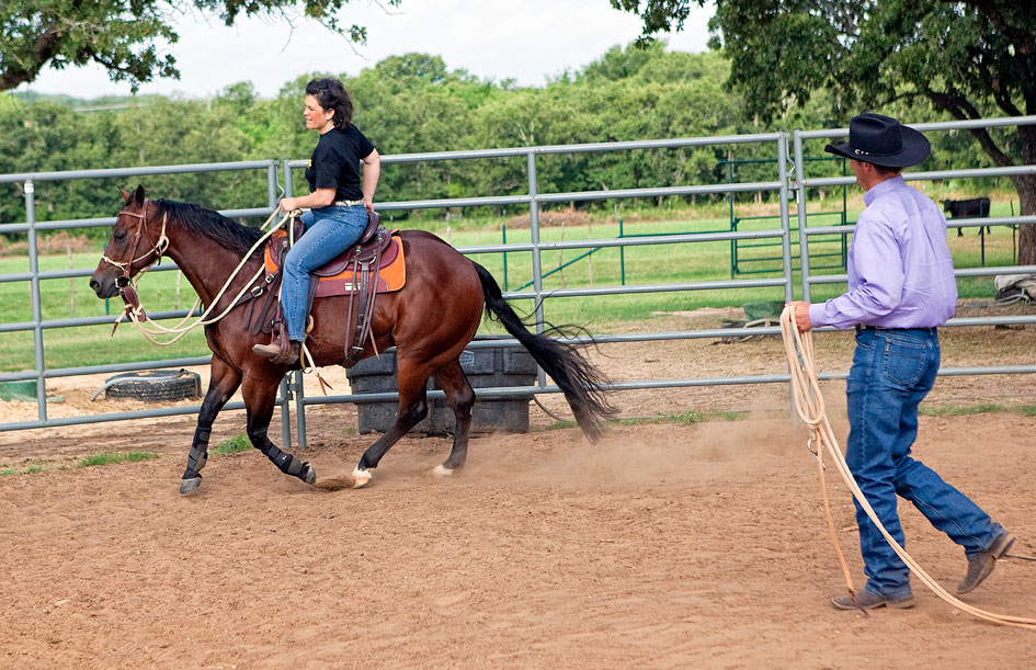 Horse canters on his own.