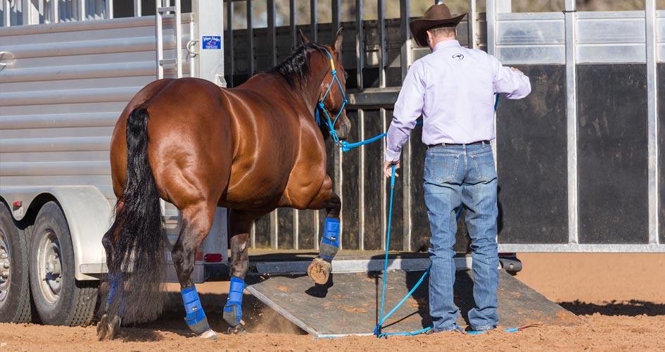 Lower the Horse Trailer Ramp