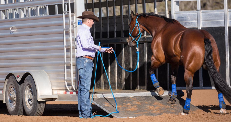 Trailering Horse with Approach and Retreat Method